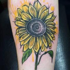 14sunflower